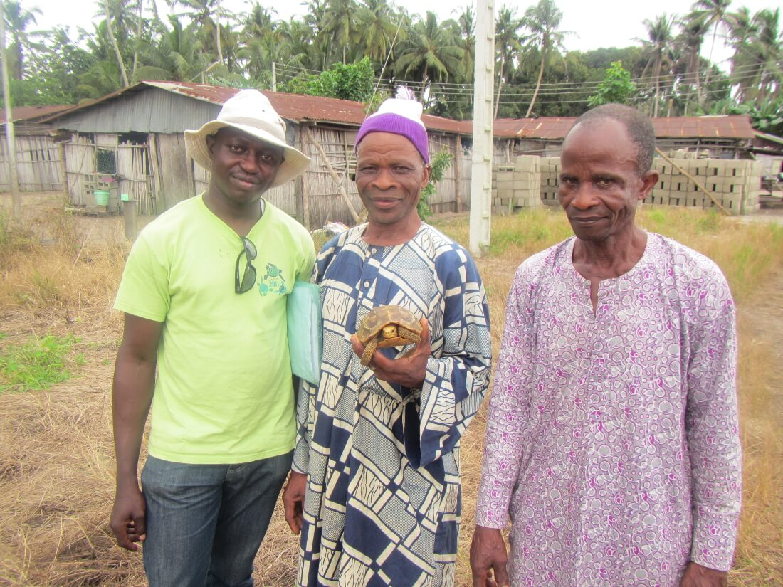 Boladji and Dunsin with the village chief holding an adult female Kinixys homeana in Nigeria