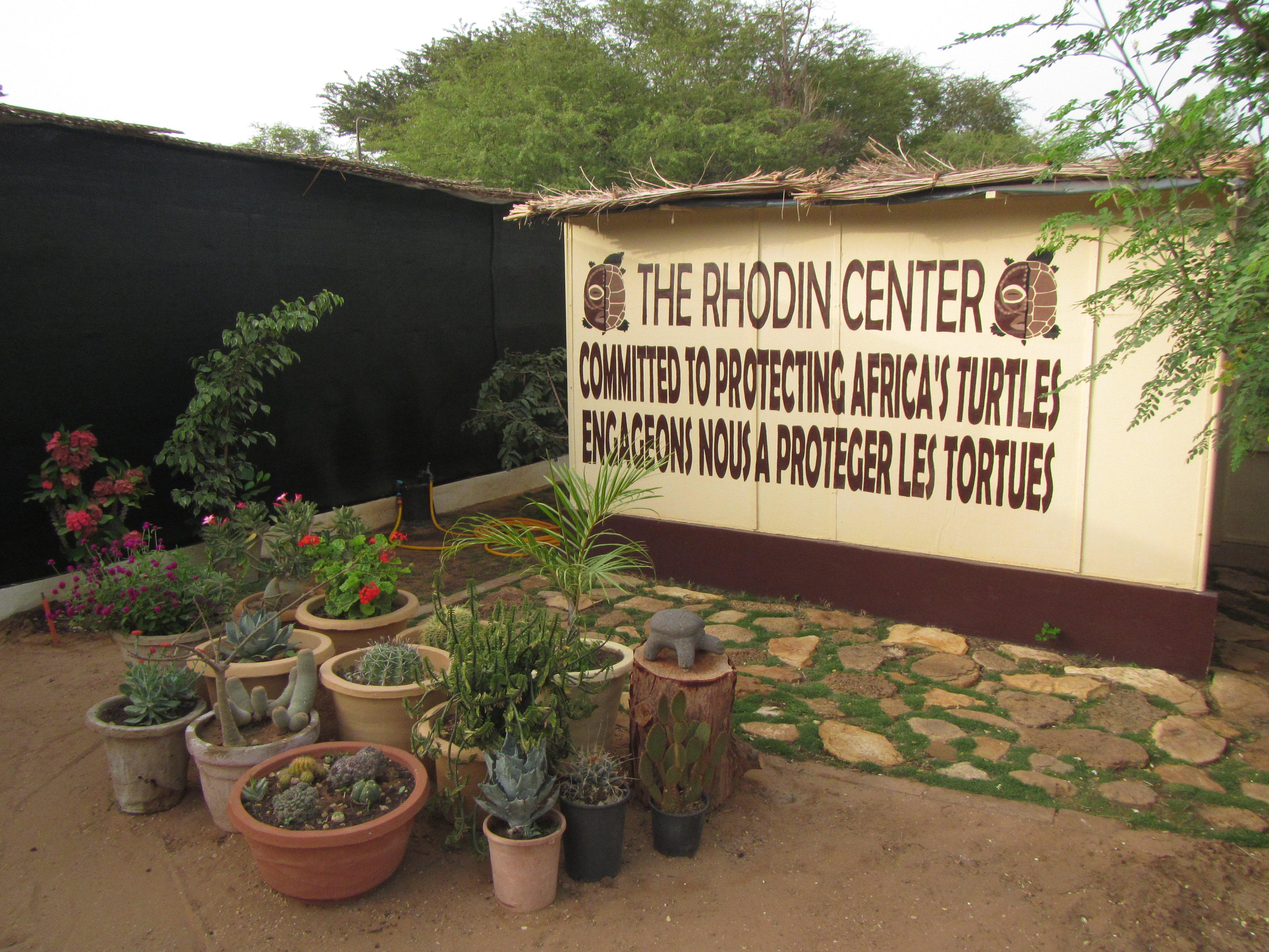 Inside view of the Rhodin Center - Ngaparou- Senegal
