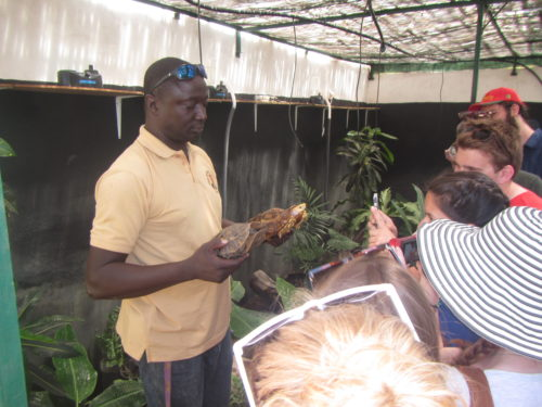 Tomas explaining African hingeback tortoise ecology at the Rhodin Center Senegal